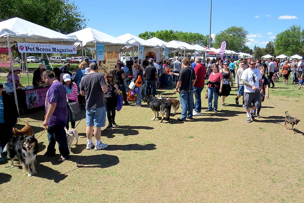 El festival contó con divertidas actividades para niños, adultos y mascotas, el sábado 1 de abril en el parque Sunset. | Foto El Tiempo/Anthony Avellaneda