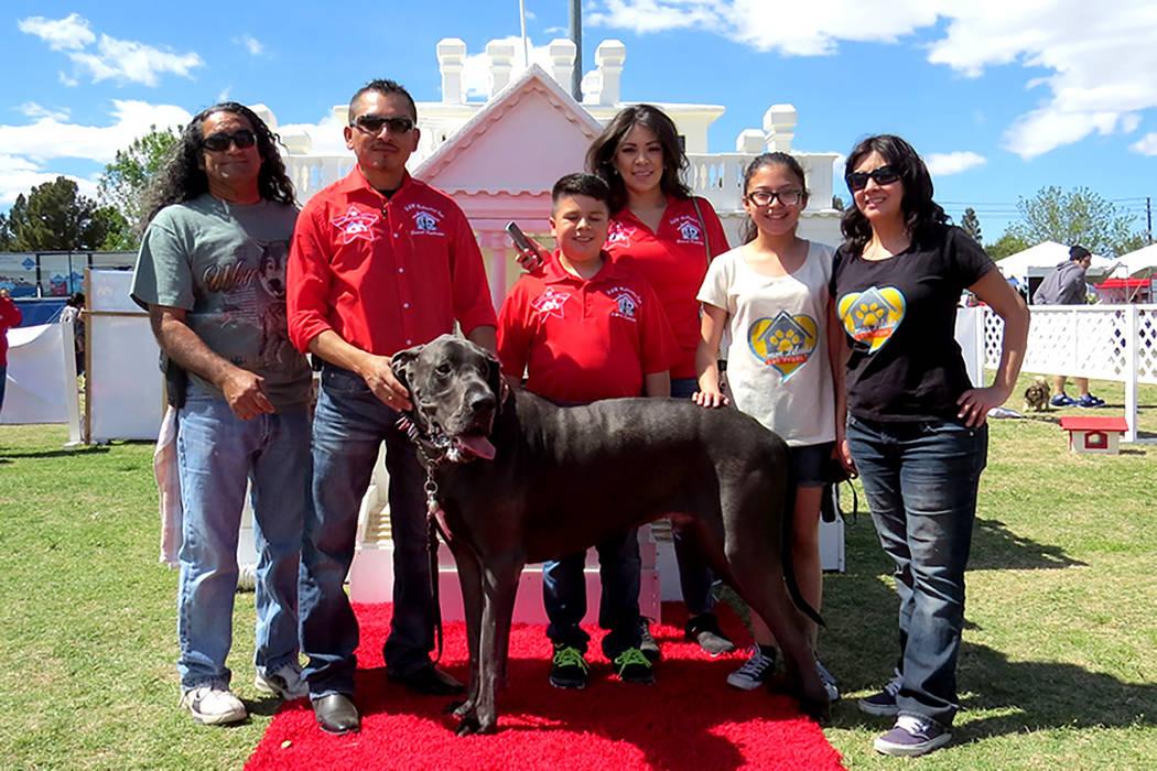 Voluntarios de la organización Amor Peludo y de Galicia Dog House algunos de los expositores hispanos presentes en este evento, el sábado 1 de abril en el parque Sunset. | Foto El Tiempo/Anthony ...