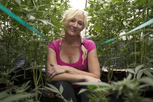 En esta foto de Octubre 12 del 2016 Christine Miller aparece sentada entre algunas de las 250 plantas de marihuana que tiene en su granja cerca de Benbow, California. Miller está preocupada por u ...