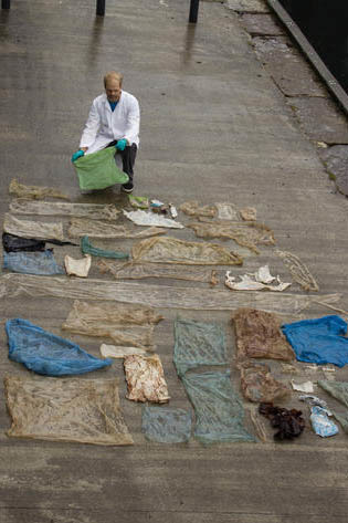 Zoólogos de la Universidad de Bergen desplegaron las bolsas de plástico encontradas en el estómago de una ballena de dos toneladas que encontraron varada en las playas de una isla cerca de Berg ...
