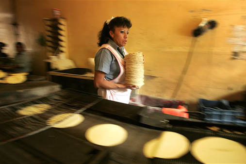 Las tortillas son un alimento básico en la dieta mexicana popular. Ahora en la escalada de precios de las gasolinas en enero del 2017 se suma el incremento a los precios de las la tortillas. (Arc ...