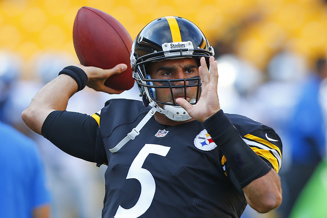 Bruce Gradkowski. (AP Photo/Jared Wickerham)