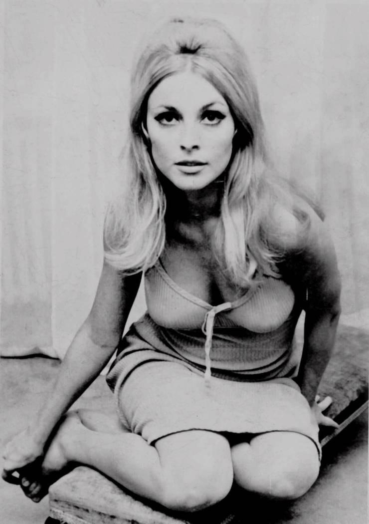 La actriz Sharon Tate se muestra en esta foto sin fecha. Tate, quien protagonizó papeles de la televisión y el cine, fue identificada por la policía como una de las cinco víctimas halladas ase ...