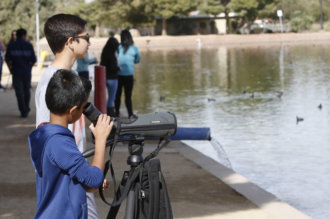 Yash Kadam, de 8 años, mira a través del telescopio mientras su hermano Ojas mira hacia otro lado durante el Día Internacional de Aves Migratorias el martes 21 de noviembre de 2017 en Sunset Pa ...