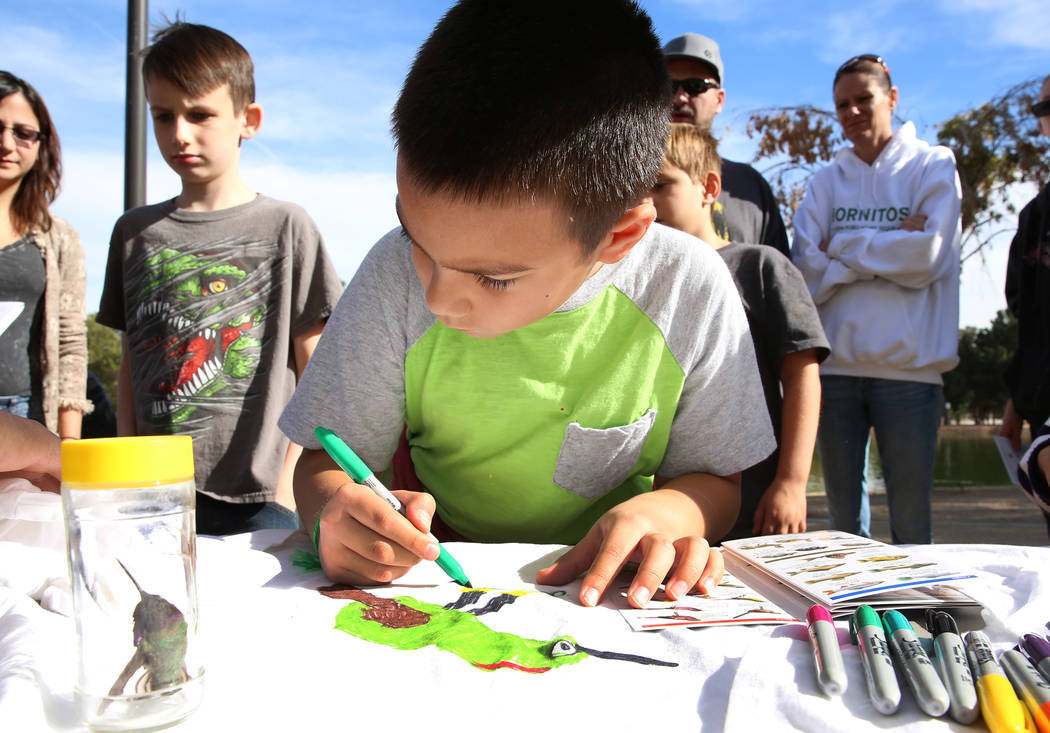 Marlowe Mandado, de 9 años, dibuja un reyezuelo coronado de rubíes en su camiseta durante el Día Internacional de Aves Migratorias el martes 21 de noviembre de 2017 en Sunset Park Lake en Las V ...