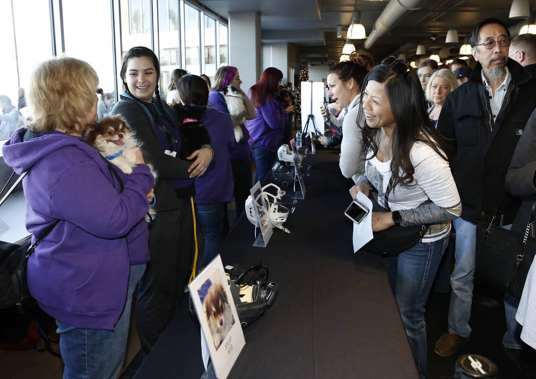 La gente, incluida Haydee Ratner, a la derecha, observa a los perros de Pomerania en el City National Arena el lunes, 18 de diciembre de 2017, en Las Vegas. Los Vegas Golden Knights y Animal Found ...