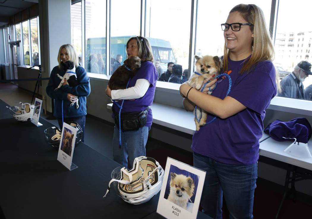 Los voluntarios, incluido Sydney Yanez, a la derecha, sostienen perros en City National Arena el lunes, 18 de diciembre de 2017, en Las Vegas. Vegas Golden Knights y Animal Foundation realizaron u ...
