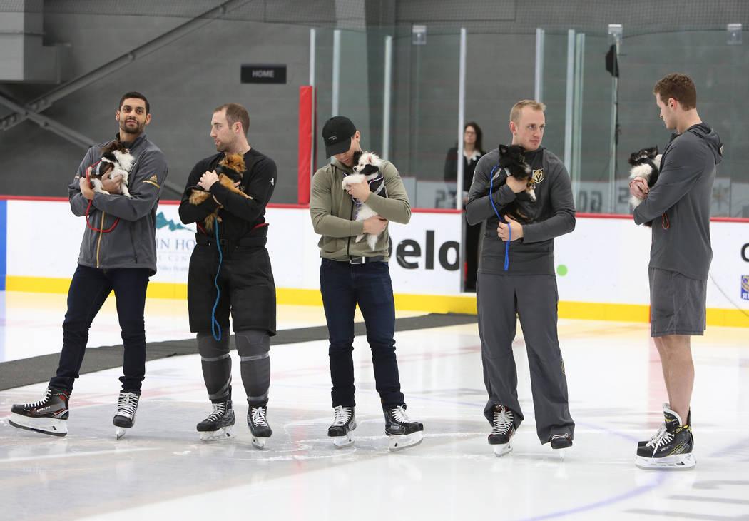 Los Vegas Golden Knights Pierre-Edouard Bellemare, a la izquierda, Brad Hunt, Jonathan Marchessault, Nate Schmidt, Brayden McNabb, a la derecha, sostienen perros Pomerania durante la subasta en Ci ...