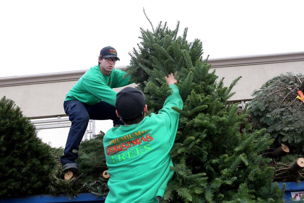 Zach Barnhart, a la izquierda, y Alan Rodriguez de Premium Christmas Trees, que tiene un servicio de eliminación de árboles de Navidad en el hogar, dejan árboles en el área de reciclaje de ár ...