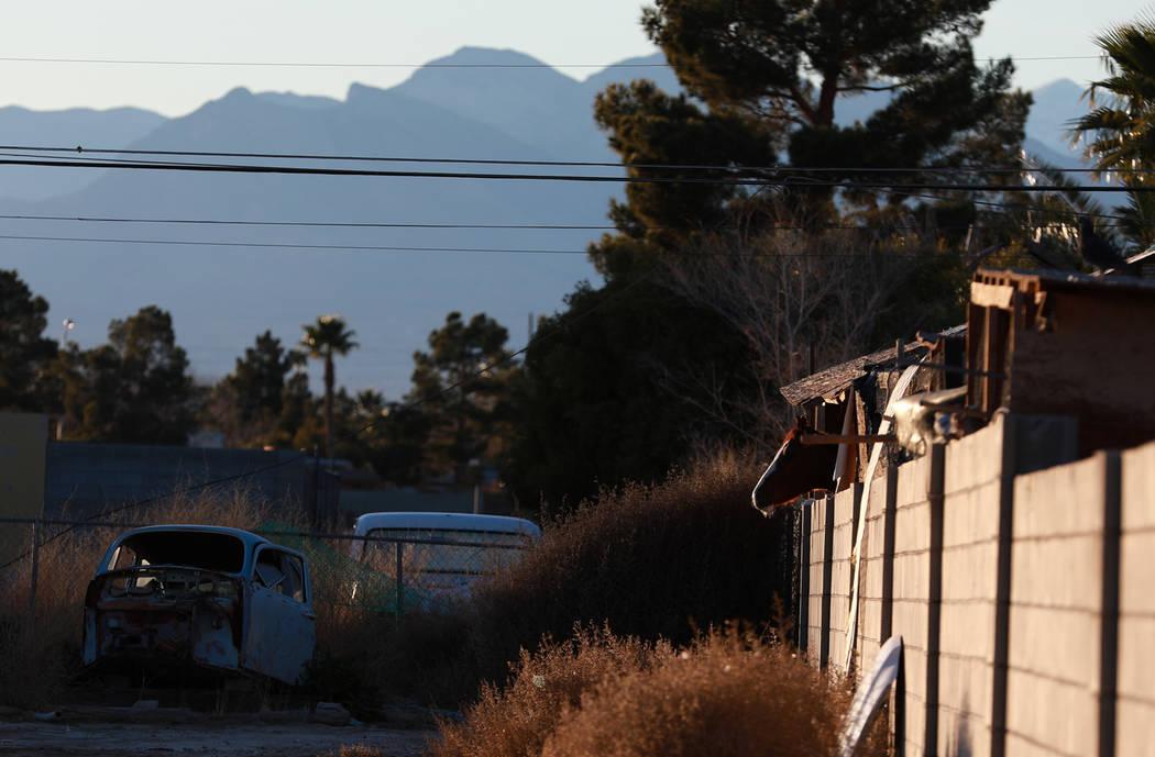 La cabeza de un caballo se asoma desde su corral mientras los oficiales trabajan para evacuar al resto de los animales de una propiedad involucrada en una investigación sobre animales abandonados ...