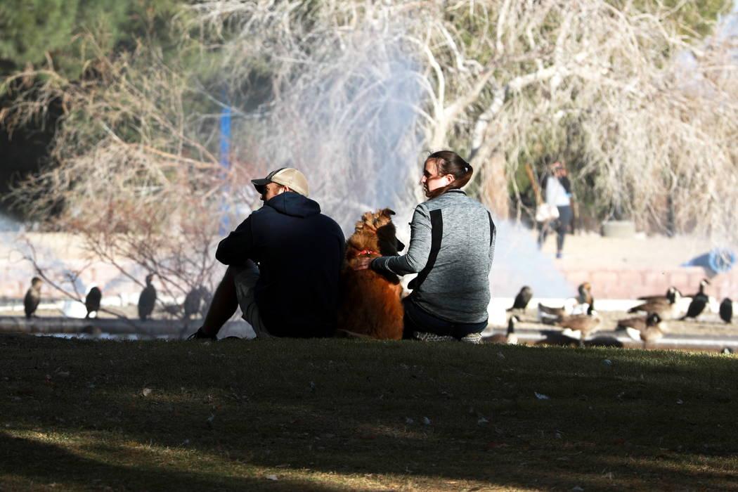 Adam Bullock y su esposa Michelle se relajan con su perro de 4 años, Angel, junto al agua en el Parque Sunset de Las Vegas el domingo 18 de febrero de 2018. Andrea Cornejo Las Vegas Review-Journa ...