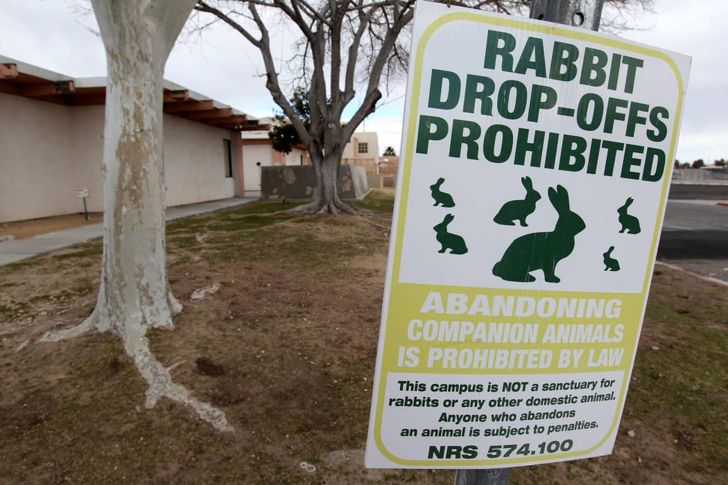 Una señal que prohíbe el descenso de conejos en el campus West Charleston del estado de Nevada. Lunes, 19 de febrero de 2018. Grupos de rescate de conejos dicen que encontraron muchos de los cie ...