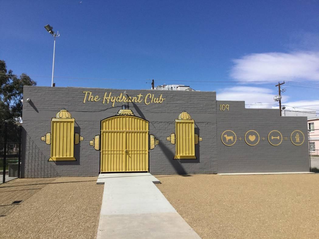 The Hydrant Club, el miércoles 15 de marzo de 2018 en Las Vegas, es una instalación educativa que ofrece servicios a los dueños de perros, incluida la guardería y el internado nocturno. (Nicol ...