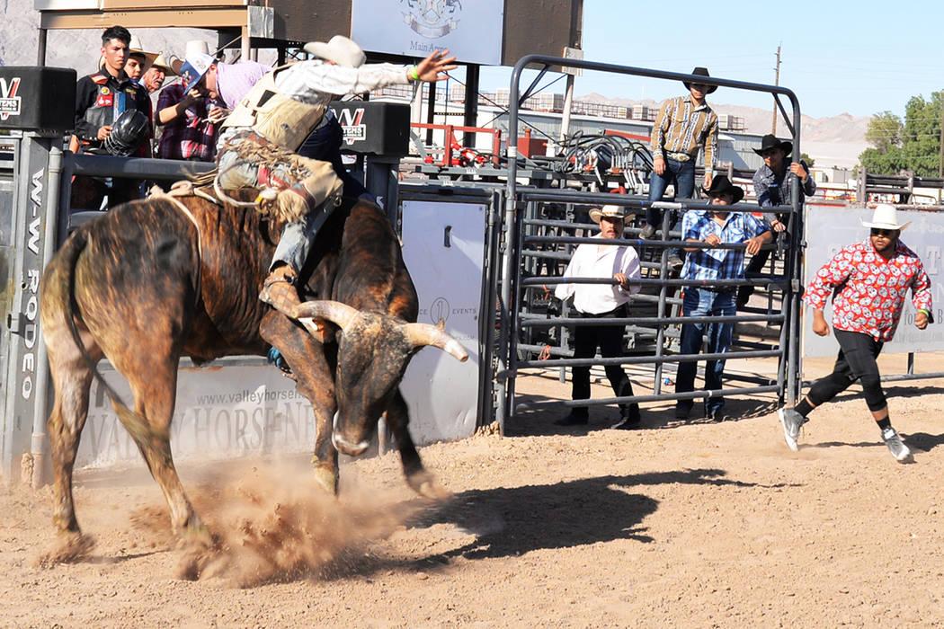 Los briosos toros del rancho Mendoza fueron montados por valientes jinetes de trayectoria internacional. Sábado 14 de abril en el Horseman's Park. Foto Frank Alejandre / El Tiempo.
