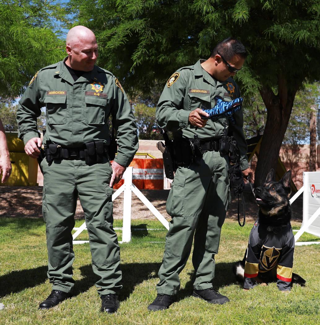 """El teniente John Henricksen, izquierda, y el oficial Glenn Obsenares presentan a """"Knight"""", el nuevo oficial K9 del Departamento de Policía Metropolitana de Las Vegas, en el LVMPD en Las Vegas el ..."""