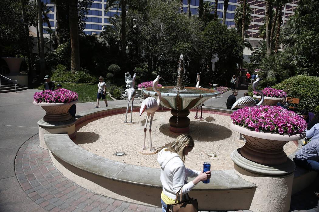 The Flamingo Wildlife Habitat en el casino-hotel Flamingo en Las Vegas, el jueves 19 de abril de 2018. Erik Verduzco Las Vegas Review-Journal @Erik_Verduzco
