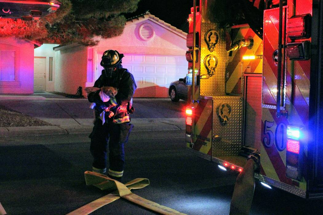 Un bombero de North Las Vegas saca un gato de la casa el lunes por la mañana después de un incendio en 5920 N. Vista Del Rancho Way. (Max Michor / Las Vegas Review-Journal)