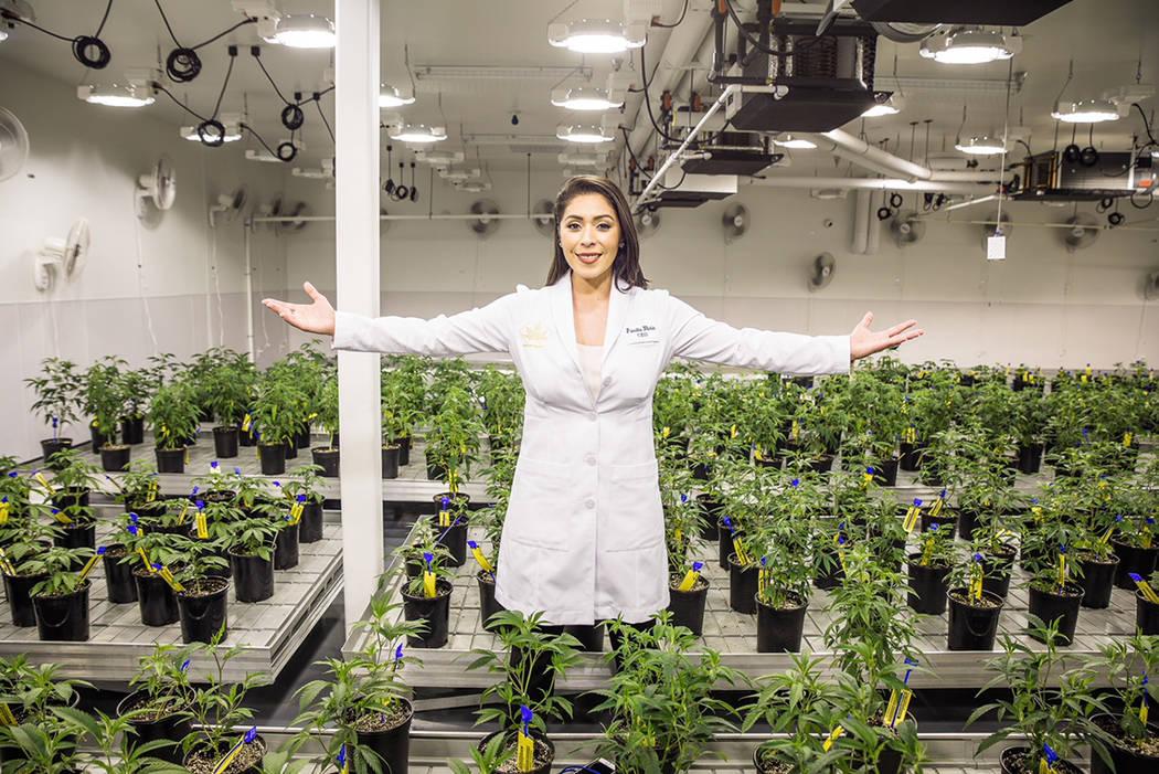 La empresaria Priscilla Vilchis es la primer mujer latina de Nevada en obtener una licencia de marihuana medicinal. Foto Cortesía.