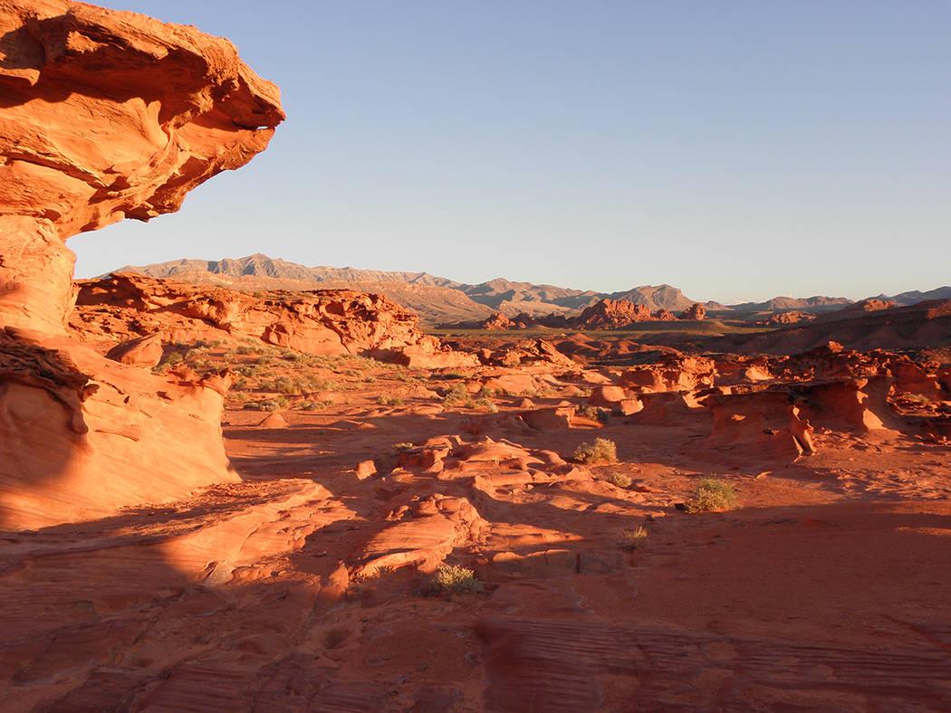 Una vista del Monumento Nacional Gold Butte, al noreste de Las Vegas. Foto Cortesía Christian Gerlach.