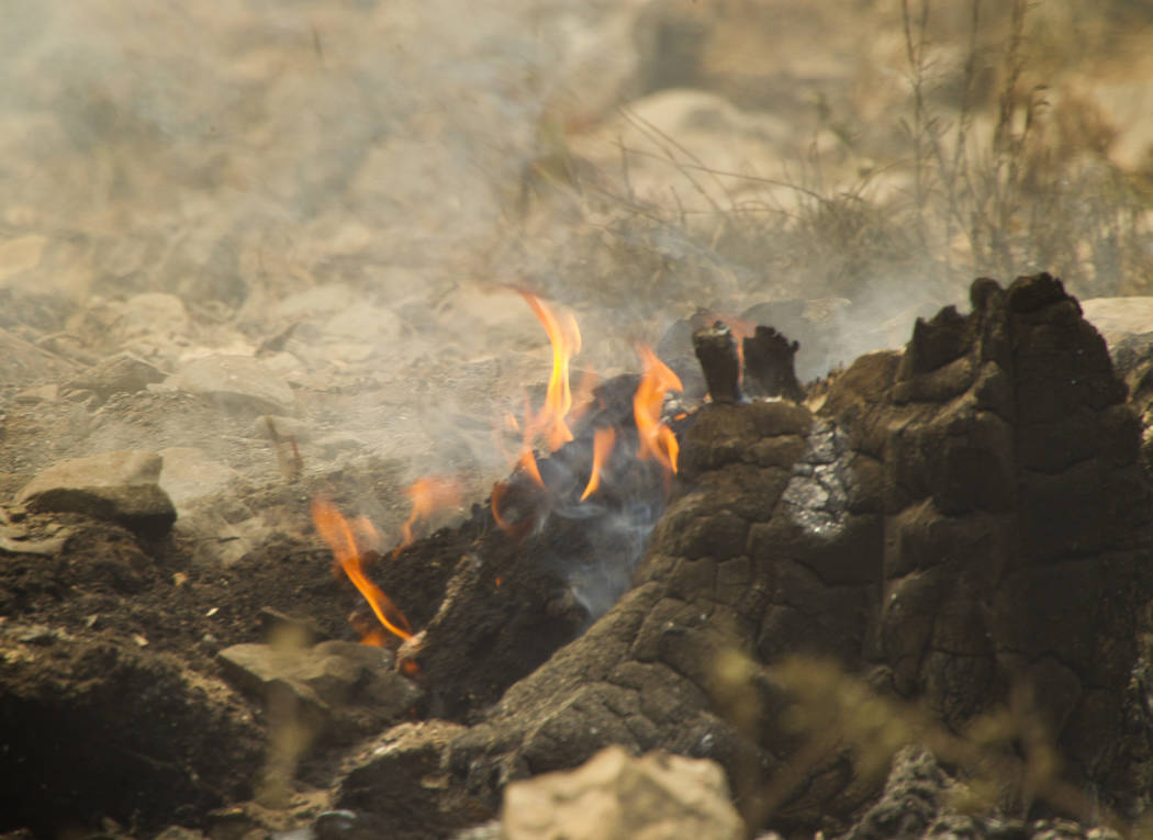 Un tocón se quema en la subdivisión Rainbow en el Monte Charleston el martes, 9 de julio de 2013. (Jeff Scheid / Las Vegas Review-Journal)