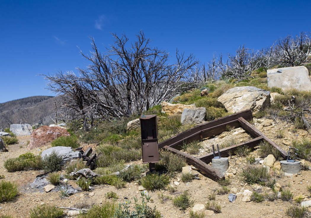 Los restos de una senda para Griffith Peak en el Área de Recreación Nacional de Spring Mountains el viernes 6 de julio de 2018. Chase Stevens Las Vegas Review-Journal @csstevensphoto