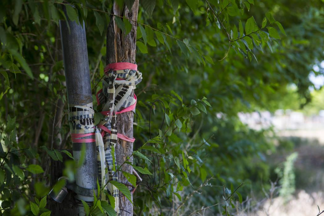 La cinta de precaución a lo largo de un poste permanece en el lugar del mortal atentado de 2016 en Panaca el jueves 12 de julio de 2018. Chase Stevens Las Vegas Review-Journal @csstevensphoto