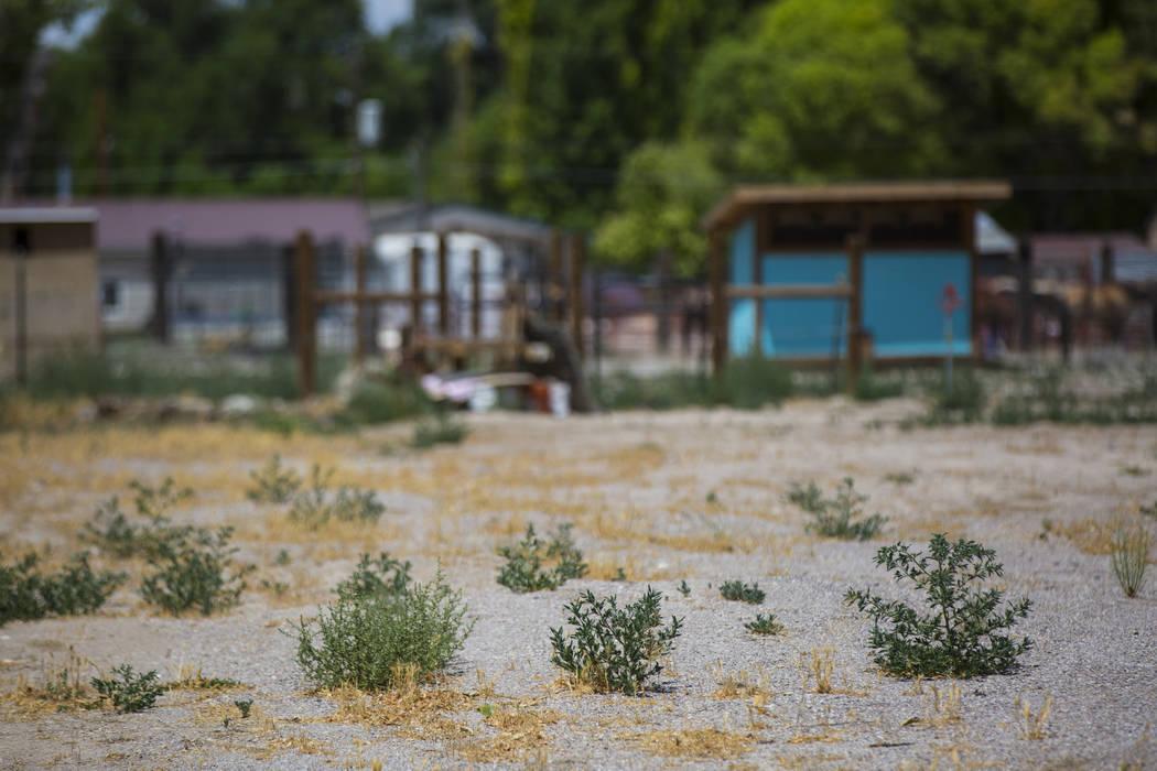 La ubicación del mortal atentado de 2016 en Panaca el jueves 12 de julio de 2018. Chase Stevens Las Vegas Review-Journal @csstevensphoto