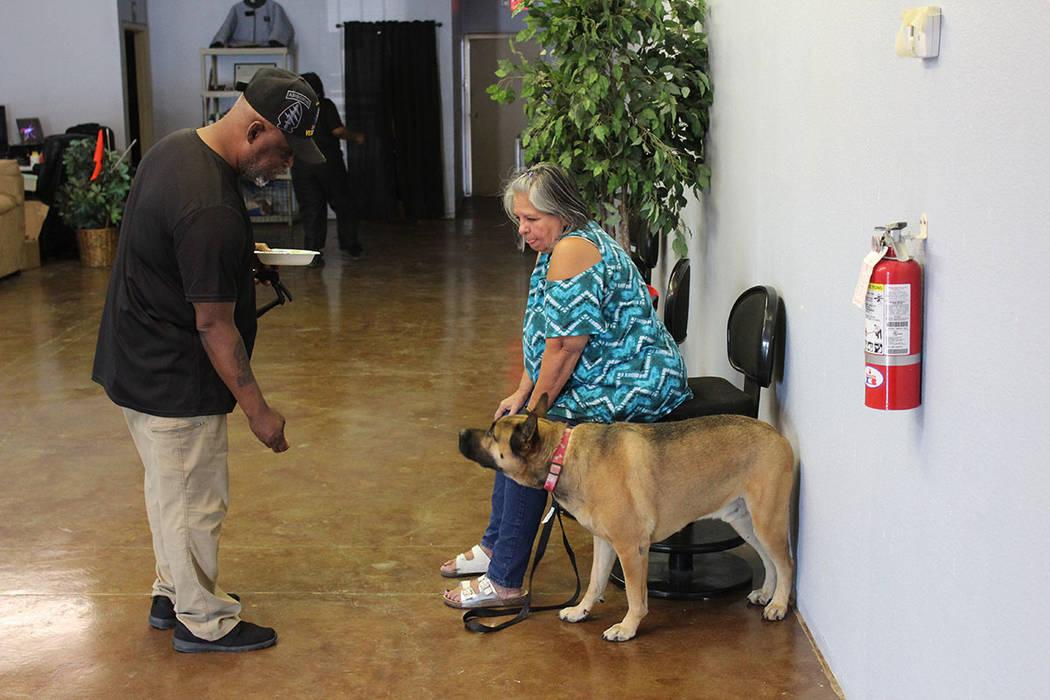 Núñez busca que los perros adiestrados se queden en un hogar con una familia y puedan servir a quien lo necesite. Sábado 14 de julio del 2018. K-9 Bootcamp. Foto Cristian De la Rosa / El Tiempo ...