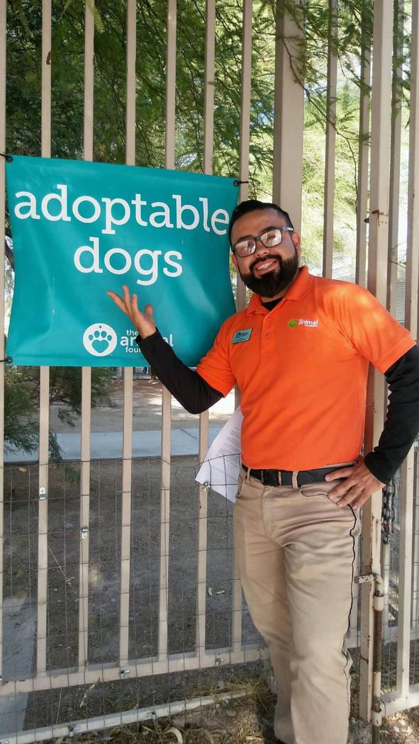 """""""Puede que encuentren al animal que es para ellos, no al que quieran, eso es muy importante"""": Julio Mejía, integrante de The Animal Foundation. Foto Cortesía."""