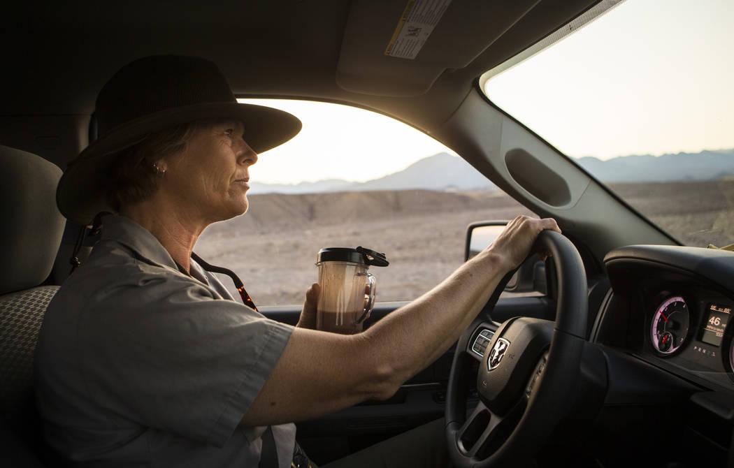 La conserje del Parque Nacional Death Valley, Terry Eddington, bebe un batido mientras conduce hacia el centro de visitantes al comienzo de su turno en el Parque Nacional Death Valley, California, ...