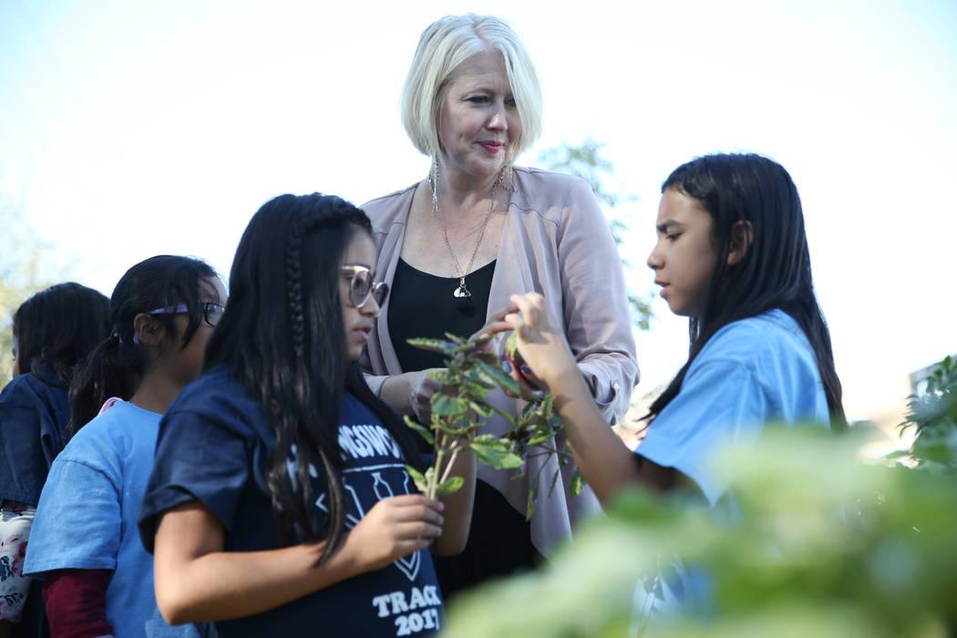 Gina Gavan, del centro, fundadora de Project Dinner Table, observa a Dana Ortiz, de 10 años, a la izquierda, y Crystal Espino, de 10 años, a ver las hortalizas en la escuela primaria Hollingswor ...