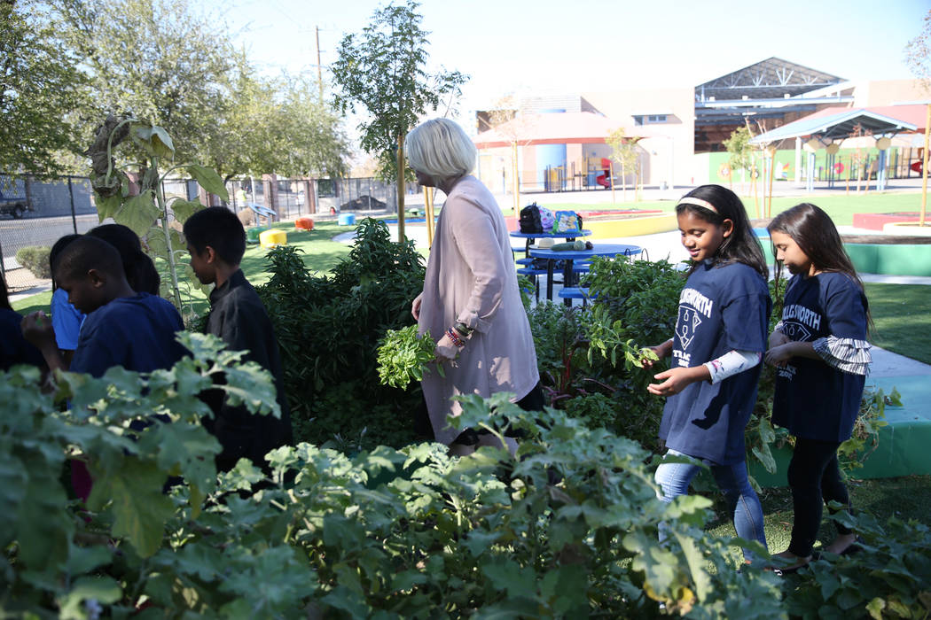 Gina Gavan, centro, fundadora de Project Dinner Table, visita el jardín de la Escuela Primaria Hollingsworth en Las Vegas con los estudiantes, el viernes 7 de septiembre de 2018. Erik Verduzco La ...