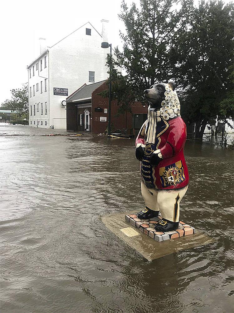 En esta foto lanzada por la ciudad de New Bern, Carolina del Norte, una estatua de oso flota en aguas de inundación en la calle South Front en New Bern, Carolina del Norte, el 14 de septiembre de ...
