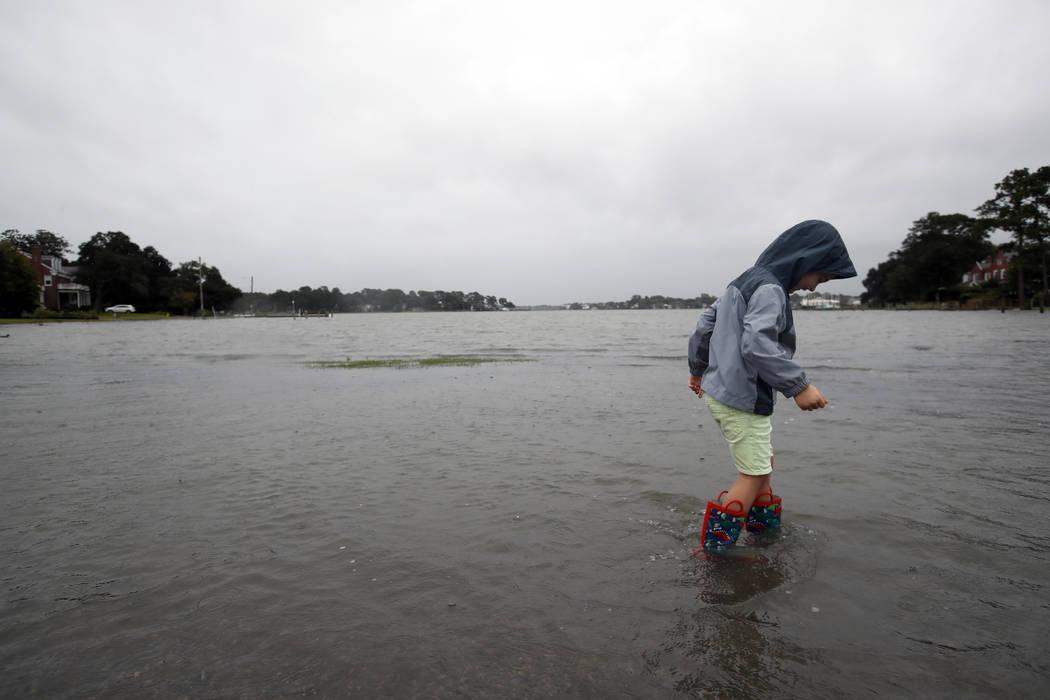 Emmett Marshall, de 4 años, de Norfolk, Virginia, se sumerge en las aguas de las inundaciones el viernes 14 de septiembre de 2018 en el área de Larchmont en Norfolk, Virginia, mientras se siente ...