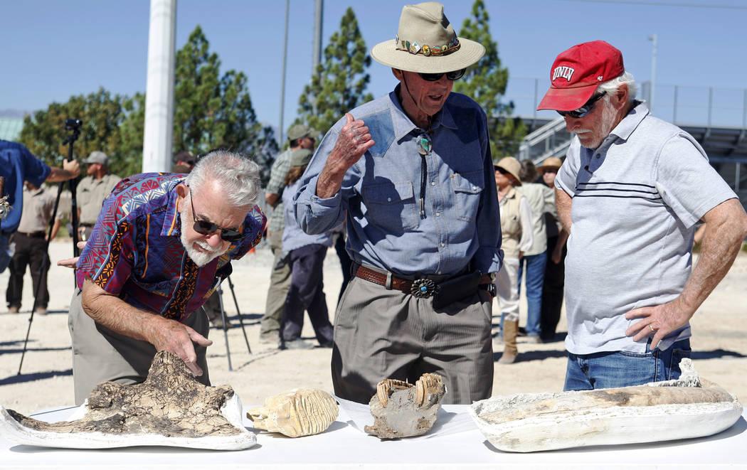 Bill McKinnis, desde la izquierda, Harold Larson y Stephen Rowland revisan los fósiles en exhibición en un evento que inaugurará los nuevos planes del centro de visitantes Ice Age Fossils State ...