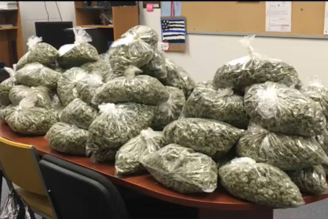 La Oficina del Sheriff del Condado de Nye incautó más de $20 millones en marihuana cultivada ilegalmente en septiembre. (Oficina del Sheriff del Condado de Nye / Facebook)