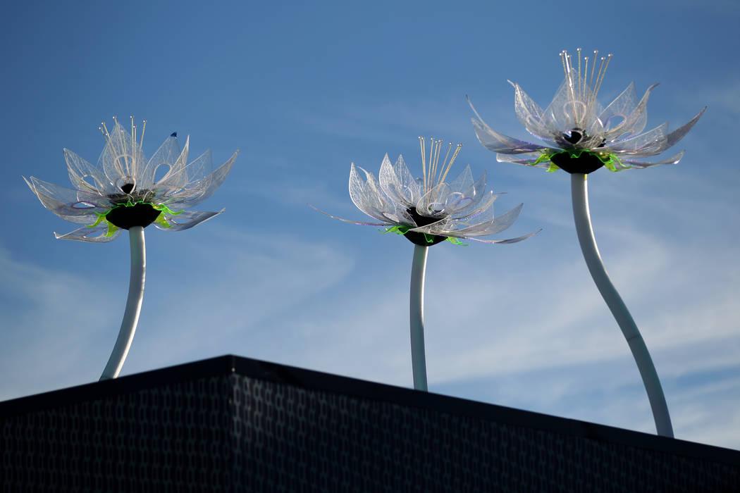 Interactivas flores Lotus de Todd Moyer en el techo del Planeta 13, que se anuncia como uno de los dispensarios más grandes del mundo, el jueves 1 de noviembre de 2018. La tienda de marihuana abr ...