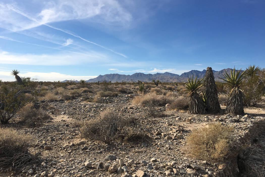 Station Casinos compró cerca de 40 acres de tierra, algunas de las cuales se ven aquí el martes 20 de noviembre de 2018 en la comunidad de Skye Canyon de Las Vegas por $36 millones. (Eli Segall ...