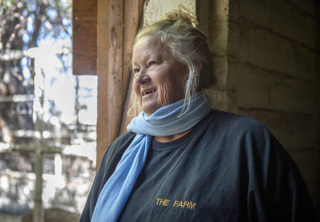 Sharon Linsenbardt, propietaria de Barn Buddies Rescue, observa algunos de los animales en The Farm en Las Vegas, el domingo 25 de noviembre de 2018. Caroline Brehman / Las Vegas Review-Journal