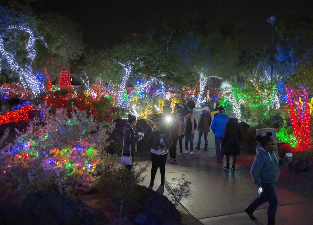 Los visitantes de las fiestas disfrutan de las luces en el jardín botánico de cactus Ethel M Chocolates el lunes 12 de noviembre de 2018, en Henderson. Benjamin Hager Las Vegas Review-Journal