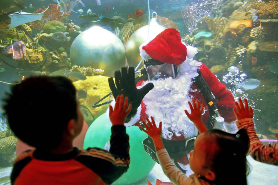 William Chaidez, de 3 años, choca las palmas con Santa bajo el agua en el hotel y casino Silverton en Las Vegas, domingo 2 de diciembre de 2018. Él y la sirena navideña estarán en el acuario t ...