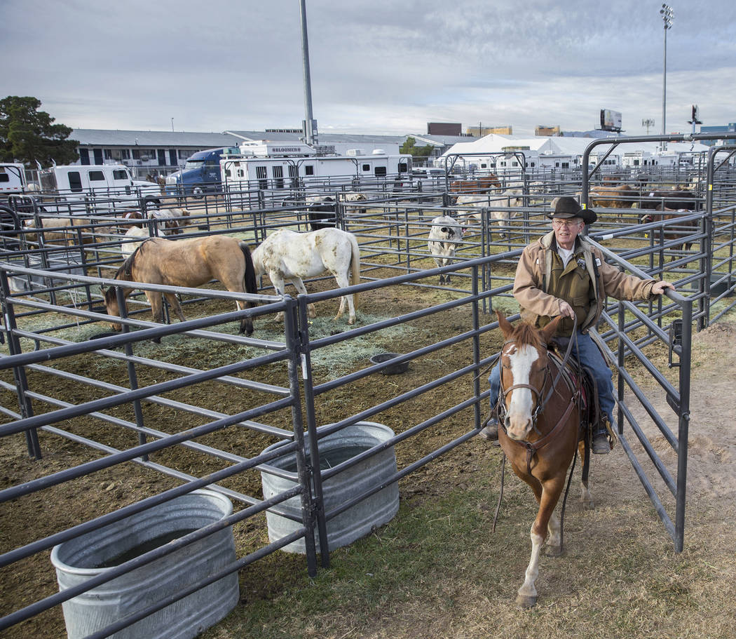 Bobby Berger, nativo del sur de Texas, vigila a un grupo de caballos el martes 4 de diciembre de 2018, en el campo intramural de la UNLV, en Las Vegas. Benjamin Hager Las Vegas Review-Journal