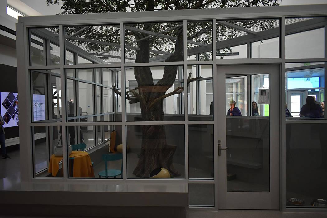 El nuevo Centro de Adopción de la Fundación Engelstad y las remodelaciones hechas al resto del albergue tuvieron un costo aproximado de $32 millones. Martes 12 de febrero de 2019 en 'The Anima ...