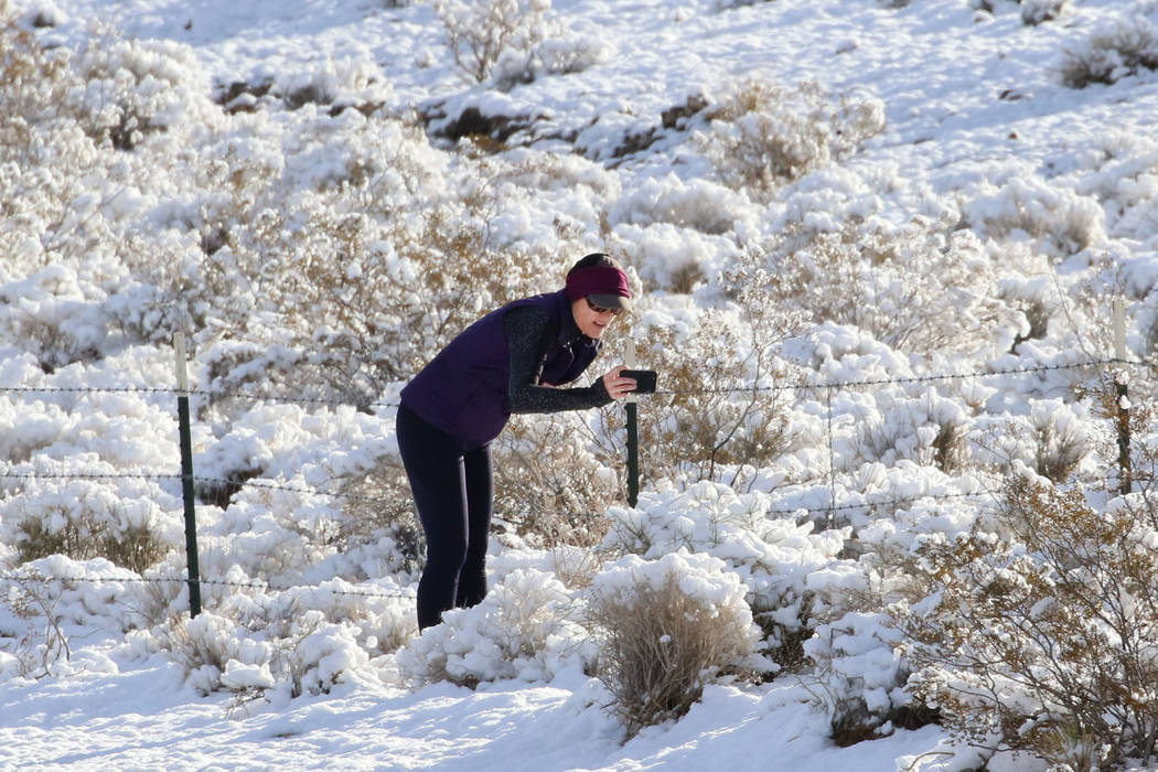 Leigh Morehouse of Summerlin toma una fotografía de plantas cubiertas de nieve cerca de Red Rock el lunes 18 de febrero de 2019, en Las Vegas. (Bizuayehu Tesfaye / Las Vegas Review-Journal) @bizu ...