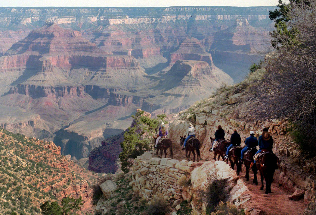 En esta foto de archivo del 27 de marzo de 1996, un tren de mulas serpentea por el sendero Bright Angel en el Parque Nacional del Gran Cañón, Arizona. El Gran Cañón celebra sus 100 años como ...