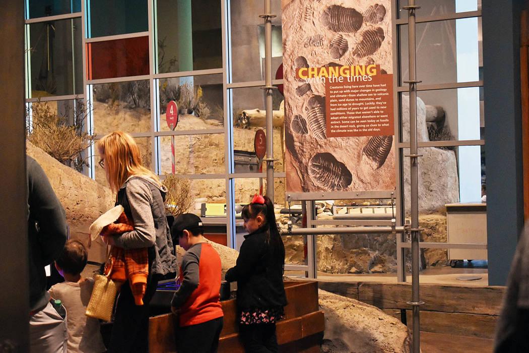 La evolución de la vida en el desierto es explicada con fósiles en el Museo de Nevada. Domingo 24 de febrero de 2019 en el Springs Preserve. Foto Frank Alejandre / El Tiempo.