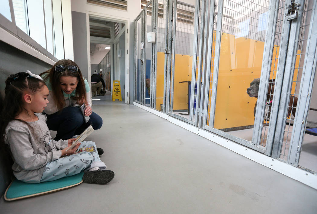 "Los estudiantes de primer grado participan en el cuarto evento anual ""Reading to Dogs in Kennels"" en The Animal Foundation durante la Semana de Lectura de Nevada en Las Vegas, el jueves 28 de febr ..."