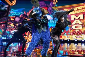 "Se ve al Pavo real ""The Masked Singer"" (Michael Becker / Fox)"