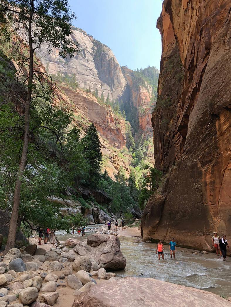 Archivo.- El río Virgen en el Parque Nacional Zion, Utah. Foto Valdemar González / El Tiempo ...
