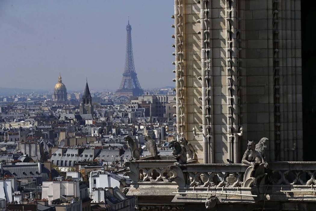 Vista desde la parte superior de la Catedral de Notre Dame de París con la Torre Eiffel en seg ...